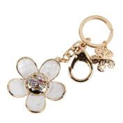 Nument(TM) Shell Daisy flower Keychain Metal Car Keychain key ring Women girls Handbag Decoration Gift Box Packed