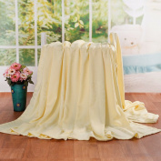 Fibre towel/cool summer blanket/blankets/air conditioner blanket -M 200x230cm
