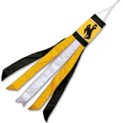 NCAA University of Wyoming WCR37781081 Windsock, 140cm