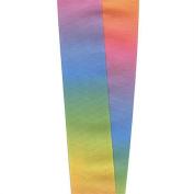 7.6cm Rainbow Grosgrain Ribbon - 25 Yards