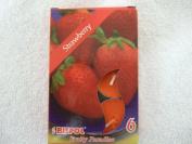 Bispol Scented Tealights 6 Pcs - Strawberry