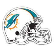 NFL Miami Dolphins Team Magnet, Large, Orange