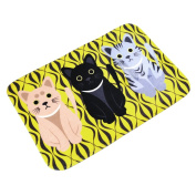 Jiyaru Welcome Floor Mats Doormats Home Rug Kitchen Carpets Bathroom Mat Yellow 40x60cm