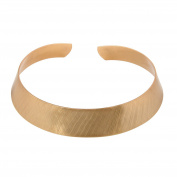 Front Row Matt Brushed Gold Colour Collar