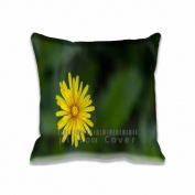 Square 50cm x 50cm Zippered Macro Dandelion Pillowcases Digital Print Adults Kids Cushion Covers