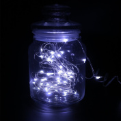 DVMRUIB 4.5V 2M/6.6Ft 20leds Led Ultra Thin AA Battery Operated Silver Wire String Light