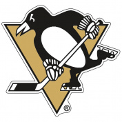 NHL Pittsburgh Penguins 23895041 Premium Acrylic Carded Magnet, Small, Black