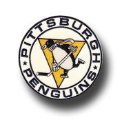 National Emblem Pittsburgh Penguins Collectible 2011 Winter Classic Patch