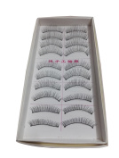 RuiChy 10 Pairs Natural Look Fake Eye Lash False Eyelashes Extension Makeup