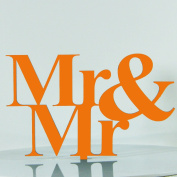 Same Sex Mr Gay Proposal Wedding Engagement Decoration Cake Topper Mirror Acrylic Silhouette (Copper Mirror)