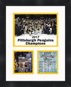 Mario Lemieux 2017 Stanley Cup , 11 x 14 Matted Collage Framed Photos Ready to hang