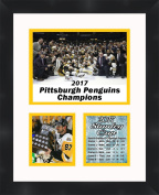 Sidney Crosby 2017 Stanley Cup Conn Smythe Trophy, 11 x 14 Matted Collage Framed Photos Ready to hang