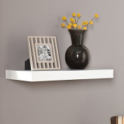 Harper Blvd Vera 60cm White Floating Shelf