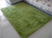 Norson Home Textiles, Ultra Soft 3 Cm Thick Indoor Morden Area Rugs Pads, New Arrival Fashion Colour [Bedroom] [Livingroom] [Sitting-room] [Rugs] [Blanket] [Footcloth] for Home Decorate. (Grass green, 78.7* 118.1 inches