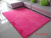 Norson Home Textiles, Ultra Soft 3 Cm Thick Indoor Morden Area Rugs Pads, New Arrival Fashion Colour [Bedroom] [Livingroom] [Sitting-room] [Rugs] [Blanket] [Footcloth] for Home Decorate. (Rose, 62.3* 78.7 inches