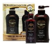 Richenna Gold Henna Clinic Shampoo with Oriental Herb Formula - anti dandruff anti itch scalp - herbal shampoo