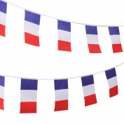 TRIXES 9 Metre French Flag Tricolour Red White Blue Bastille Day Triangular Bunting for National Celebrations