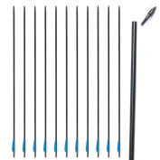 Topoint Archery Outdoors Carbon/Fibreglass 80cm Shaft Removable Arrows with Field Points Replaceable Tips for Recuve & Compound Bow