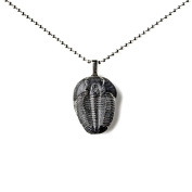 Trilobite Pendant with Chain, Novelty Gift Idea, Jewellery, Accessories, Gift Box Included