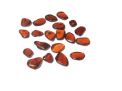 Raw Dark Amber Flat Gemstones Very Small Set of 20 Stones