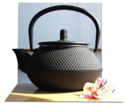 Japanese Style Small Tetsubin Cast Iron Black Hobnail Tea Pot Kettle 0.3 Litre