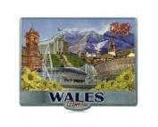 Welsh Wales Photo Montage Foil Stamp Fridge Magnet Souvenir Cymru Collage