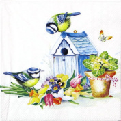 20x Luxury Lunch Paper Napkins Serviettes Tableware Party Supplies -springtime