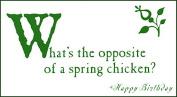 Quiplip BL386PCK 'Spring Chicken' Greeting Cards