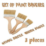 3 X Paint Brushes Natural Bristle For Painters Builders In / Out Side Painting
