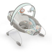 Ingenuity Candler Automatic Bouncer