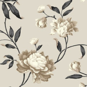 Cream Biscuit & Black Floral Design Georgina Style Wallpaper Feature Wall