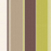 Stripe Wallpaper Chocolate Lime Beige Feature Wall Bedroom Living Room