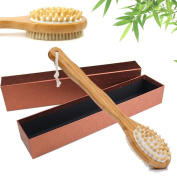 Bath Body Brush-100% Natural Boar Bristle Long Handle Wooden Dry Skin Brushing,Back Massager Scrubber,Exfoliating Skin and Cellulite