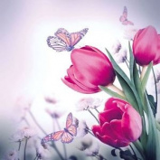 "Tulips Butterflies Pink Grey 3-ply 20 Paper Napkins Serviettes 13""x13""-33x33c"