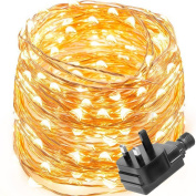 Le Waterproof 10m 100 Led Copper Wire Lights, Power Adapter Included, Fairy