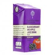 Pumpkin Tree Organics | Blackcurrant & Apple Juice | 3 x 200ml