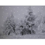 Touch On/touch Off Winter Snowy Scene Light Up Fibre Optic Led Canvas/picture 40