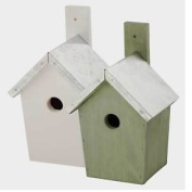 Chapelwood Coloured Nest Box Green Or White