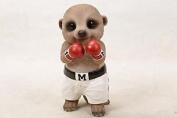 Babymeerkat - Champion Boxer