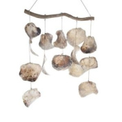 """'mobile """"placuna Shell, 50 Cm, Natural"""
