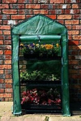 Tom Chambers 3-tier Greenhouse