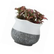 Plant Pot Flower Planter New Flowers Ceramic Home Decor Balcony Cactus Special