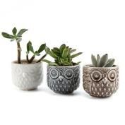 T4u 7cm Ceramic Owl Pattern Sucuulent Plant Pot/cactus Plant Pot Flower Full 1 3