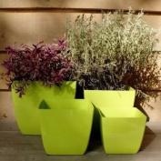 13cm Santiago Cedar Planter Home/garden Flower Plant Pot Container