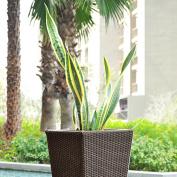 Indoor Outdoor Planter Rattan Wicker Garden Water Reservoir Irrigation Plant Pot