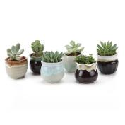T4u 6.5cm Ceramic Flowing Glaze Black & white Base Serial Set Sucuulent Plant Pot