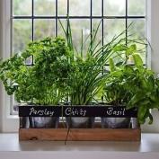 Indoor Herb Kit Garden 3pc Window Planter Box Wooden Indoor Kitchen Pots Seeds