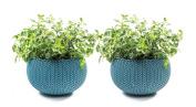 Keter Knit Cosies Indoor/outdoor Garden Plant Pot Planters, Small - Ocean Blue,