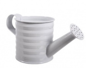 Kaemingk Zinc Watering Can