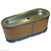 Air Filter Fits Briggs & Stratton 12hp - 15hp 493909 496894